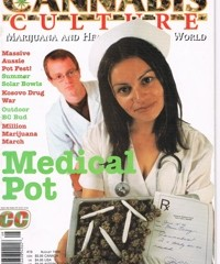 Medical pot – Cannabis culture – 1999