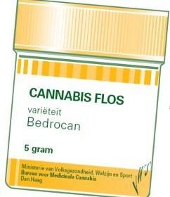 Bedrocan, l'usine qui produit du cannabis médical – ARTE