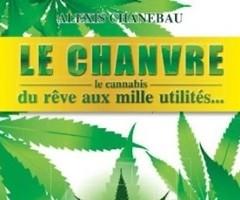 le chanvre – Le cannabis – du rêve aux mille utilités