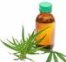 Épilepsie : Du cannabis contre les crises – 21 mai 2014