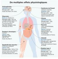 Actualités du cannabis médical, Alchimiaweb Juillet 2014