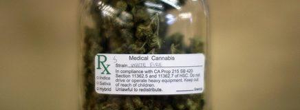 Le cannabis à usage médical permet d'éviter les overdoses aux antidouleurs