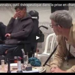 Journées AFR 2014 Le cannabis, outil thérapeutique dans la prise en charge des usagers de drogues