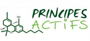 Logo principes actifs