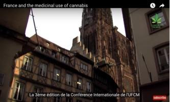 Conférences sur le cannabis médical en France et en Espagne