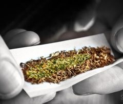 Les effets complexes de la nicotine lorsqu'elle est mélangée au cannabis