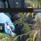 Se soigner avec de la marijuana – Le cannabis, ou la renaissance d'un médicament «interdit»