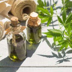 Cannabis médical : cette « mousse » serait plus efficace que le THC
