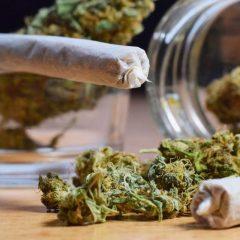 Science décalée : le cannabis ne se fume plus, il se vaporise