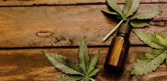 ASCO 2019 : Cannabis et cancer, encore beaucoup de questions à éclaircir