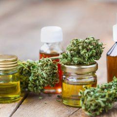 ANSM – CSST – Cannabis thérapeutique – séance du 26 juin 2019