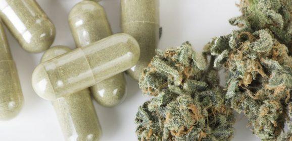 Le cannabis thérapeutique pourrait réduire la consommation d'opioïdes aux Etats-Unis