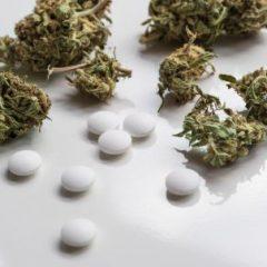 Ces questions que vous vous posez sur la 1e expérimentation de cannabis médical en France