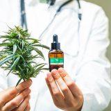 Cannabis « médical » contre cannabis « récréatif » : une vision trop simpliste