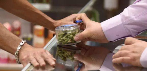 TRIBUNE. « Après la crise du Covid-19, il faut légaliser le cannabis, vite ! »