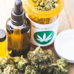 Tribune pour un cannabis médical : «Nous attendons des décisions politiques fortes»