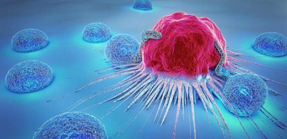 Etude : Des traitements au THC aident à prévenir le cancer du côlon