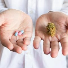 CANNABIS : Efficace contre les TOC ?
