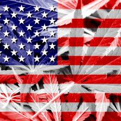 La légalisation du cannabis aux États-Unis. Modèles de régulation et premier bilan