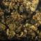 Alerte: cannabinoïde synthétique MDMB-4en-PINACA – Alerte suisse type