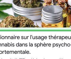 Questionnaire sur l'usage thérapeutique du cannabis dans la sphère psycho-comportementale