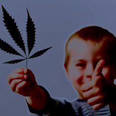 Le cannabis, meilleur traitement connu contre l'épilepsie infantile
